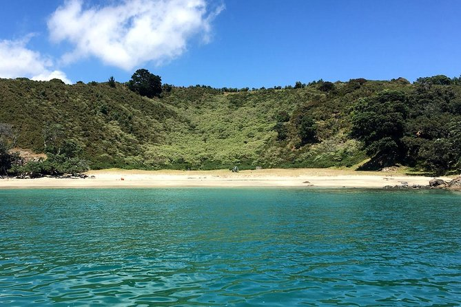 This 5-hour walk combines the best of Waiheke Island bush and beaches. Fabulous coastal views, seabird nesting grounds and lush forest trails will make this an adventure to remember!<br><br>Experience some of the most majestic forest reserves on the island, including the magnificent Pohutukawa trees and Nikau Palms of the Whakanewha Regional Park, Glenbrook Reserve and Te Whau Peninsula.<br><br>Enjoy fabulous views of Waiheke Island and back to Auckland.<br><br>Learn about island life in the Rocky Bay area.<br><br>Finish in time for a swim or packed lunch at the beach.