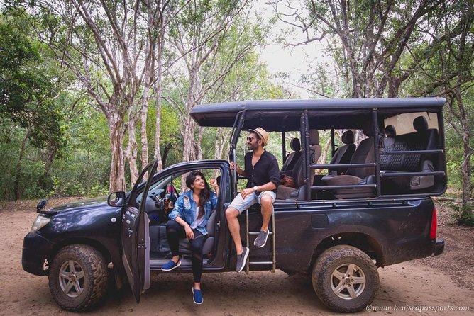 Safari Tour, Parque Nacional Yala, SRI LANKA