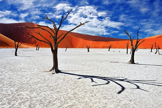 This Namib Desert tour to Sossusvlei provides you with a very time-effective opportunity to see one of Namibia's spectacular must-see sights. The safari provides you with a great getaway. Sossusvlei is one of the most popular tourist attractions in Namibia. A camera should never be too far away on this journey because the picturesque scenery and the desert's fauna and flora are ideal for photographing. For those who love and enjoy nature's challenges, the tour provides you with the opportunity to finally climb some of the highest sand dunes in the world. Fitness isn't the only challenge thoughts of how beautiful desert animals survive in such harsh extreme desert climates will leave your mind with lots of answered questions.