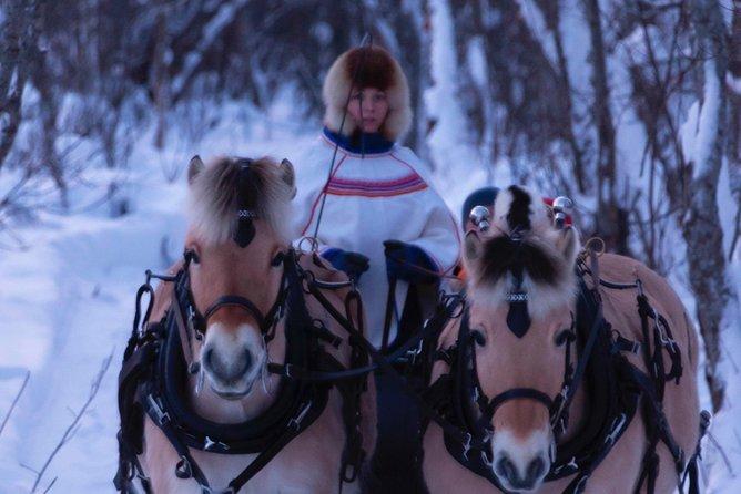MORE PHOTOS, Sleigh Ride w/ Tapas Meal - Experience Arctic Farm Life