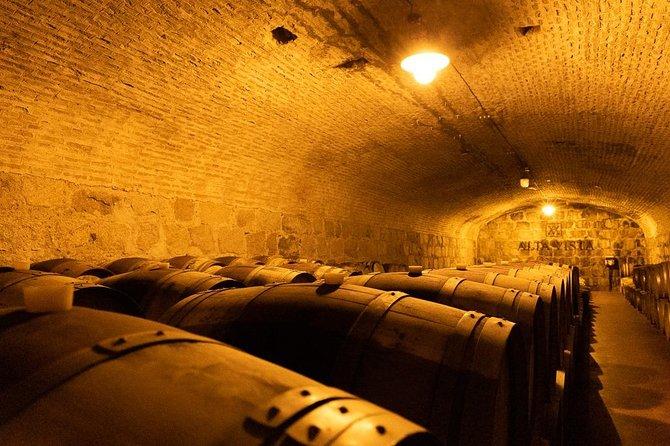 Tour del Vino privado en Lujan con almuerzo, Mendoza, ARGENTINA