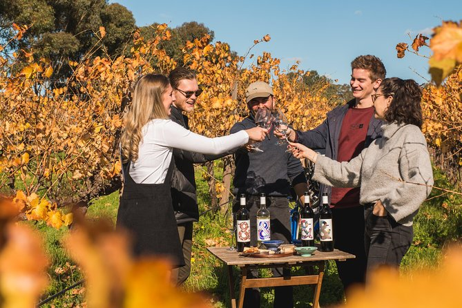 This experience goes beyond wine, it is about discovering our region with a new lens and enjoying all the good things in life: nature, beautiful wines and great company!