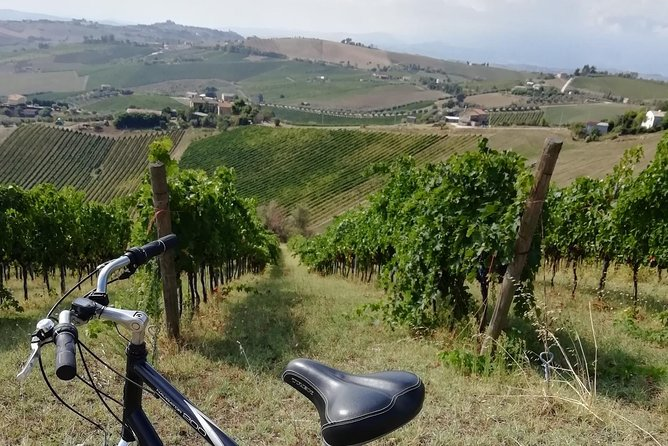 Biking through hill villages, wine and tipical local foods tours, Ascoli Piceno, Itália