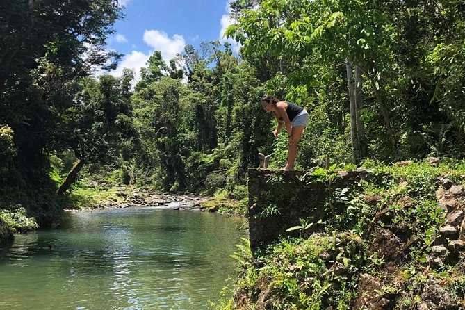 Let me show you MY island! (with visit to El Yunque), ,