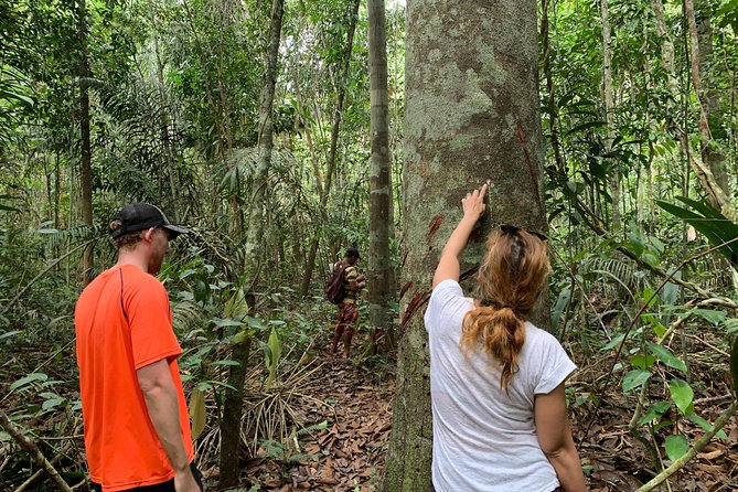 A Whole Day in the Jungle, Manaus, BRASIL