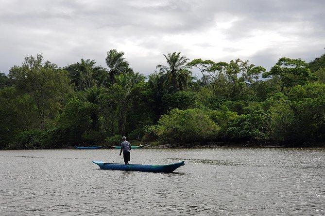 Ivan Bahia, Recôncavo Baiano: Cachoeira & Coqueiros incl. mangrove-trip + lunch, ,
