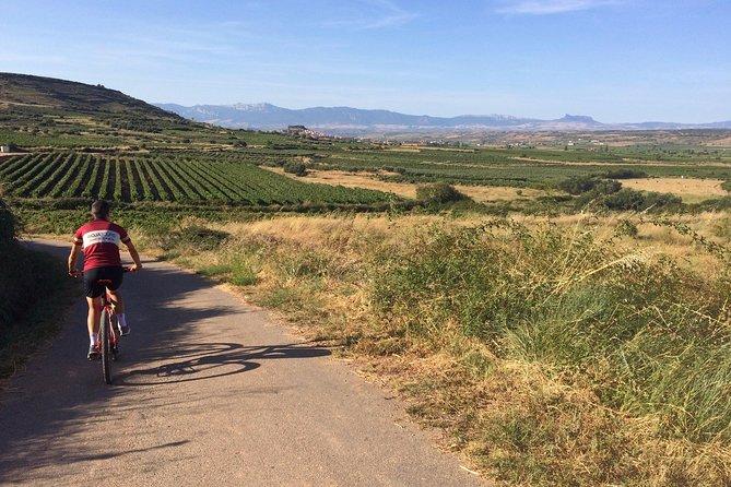MÁS FOTOS, Rioja Bike & Wine, including 2 winery visits with wine tastings