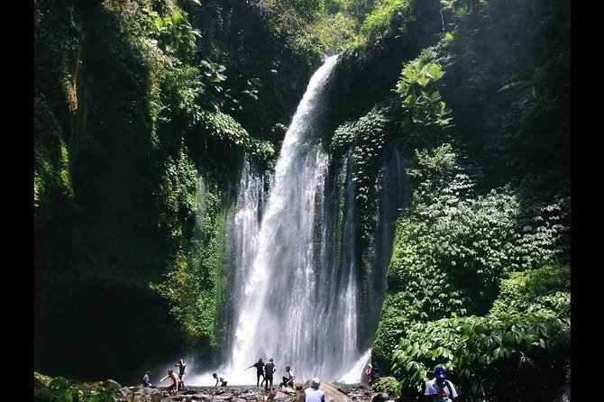 Main Info<br>Tour Itinerary:<br><br>Pick up at your Hotels area at 09.00 AM, your first stop will be at wild park at North of Lombok, during your journey you will get amazed by the natural view of rice field and hills. then, once we finished our first tour, we will continue to Senaru waterfall next to Mount Rinjani. this is best escaping trip. you will be welcoming by waterfalls view and Mount Rinjani View.