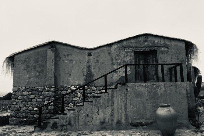 Lujoso recorrido vinícola por Colomé, Salta, ARGENTINA