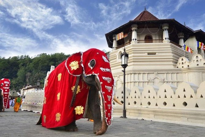 Private Day Tour Of Kandy From Galle and Hikkaduwa., Galle, SRI LANKA