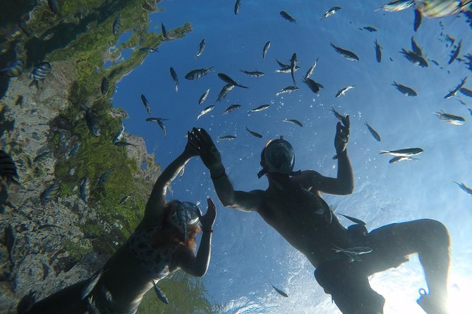 MÁS FOTOS, From Khao Lak : Phi Phi Snorkeling Day Trip by Speedboat Including Buffet Lunch