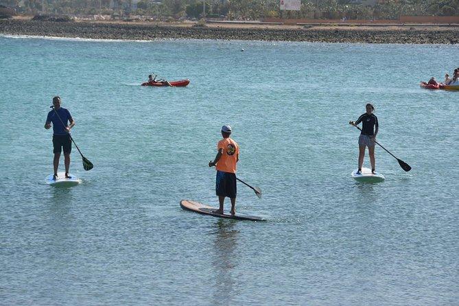 2-Hour Beginners Stand Up Paddle Course in Caleta de Fuste, Fuerteventura, ESPAÑA