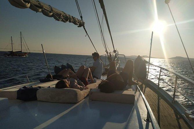 Mykonos to Delos & Rhenia Cruise ,BBQ&drinks, optional Delos Tour & Transfer, Miconos, Greece