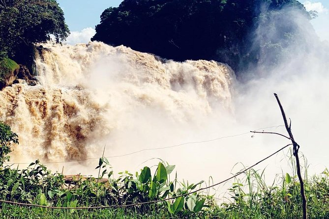Kwafrika Travel 4 days Zongo falls, Bonobos and Kinshasa city experience package brings you to Kinshasa city and its surrounding in the Democratic Republic of the Congo. It makes you experience the gorgeous 65m-high Zongo falls, watching the water roaring over the precipice into the river will be unforgettable. Moreover, you will visit the Bonobos, our closest living relatives, with more than 99% identical DNA before going for a crash Kinshasa city tour where you will discover Kinshasa's vibrant culture and history.