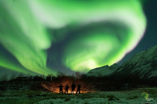 Northern Lights by Minibus. Photos Under the Lights included. Tromso, Tromso, NORUEGA
