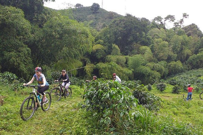Ride around a typical coffee farm, riding into the coffee plantations, making directly contact with the plants, cross around the bambu forest and some small water springs with the chance of some bird watching, beautiful viewpoints to watch the towns and the mountains