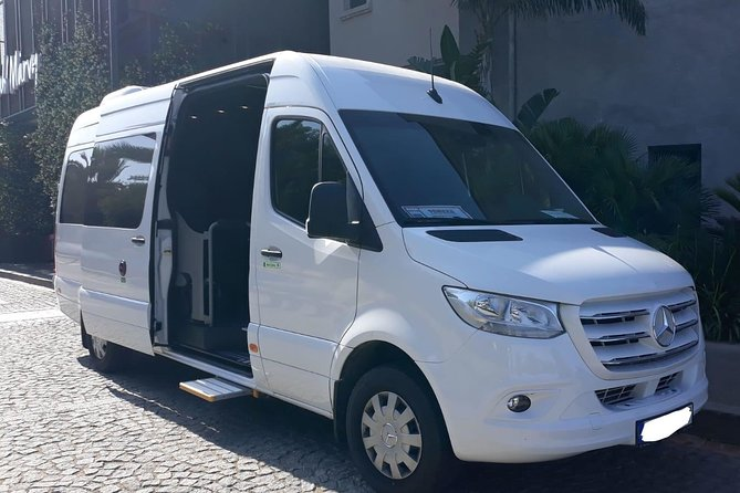 Arrival Private Transfer from Bodrum Airport BJV to Bodrum City by Minibus, Bodrum, TURQUIA