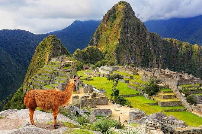 Full day tour in Machu Picchu with lunch, Cusco, PERU