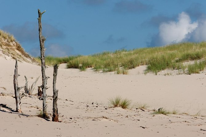 Private Full Day Tour: Moving Dunes - Słowiński National Park, Gdansk, POLONIA