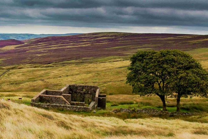 The Brontes, Wuthering Heights and Jane Eyre full day tour by rail and minivan, ,