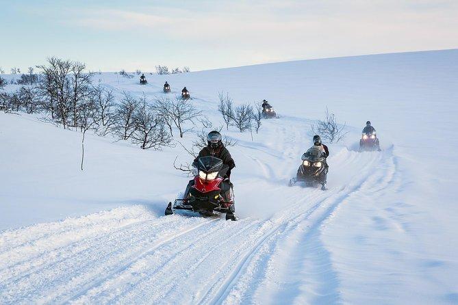 MORE PHOTOS, Snowmobile safari in the mountain plateau of Finnmarksvidda
