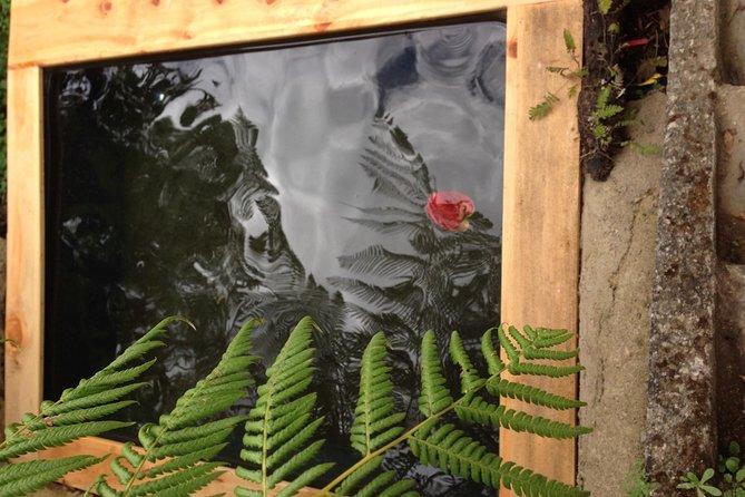 Sauna In The Woods, Antigua, GUATEMALA