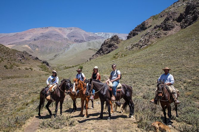 The Real Gaucho Day Trip from Mendoza - Don Daniel Ranch, Mendoza, ARGENTINA