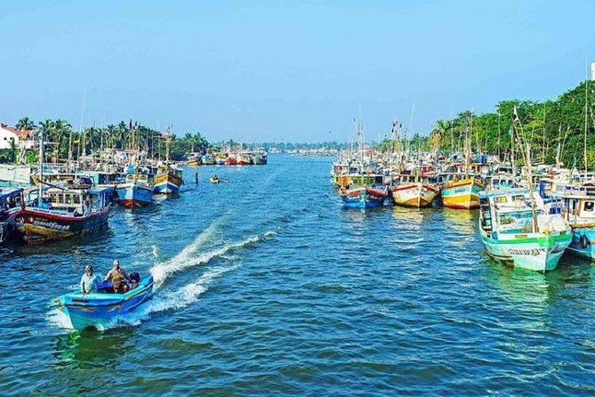 Travelers can Explore the beautiful multi-religious, cultural and historical city as the want and as they wish without any interruptions. They can Enjoy the beauty of Negombo.