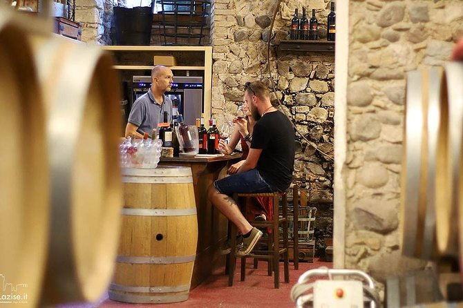 MAIS FOTOS, Wine Tasting in a Aging Cellar among medieval walls