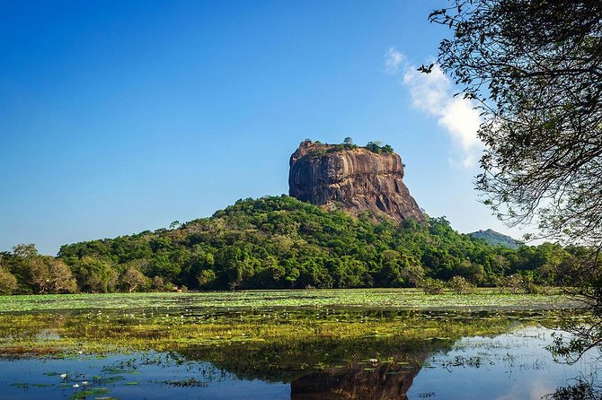 Private Sri Lanka tour: Kandy, Galle, Bentota, Dambulla, Sigiriya, and more<br>Discover mangroves, sea turtles, tea gardens, spice plantations, and beyond<br>Spend six nights in comfortable hotels with breakfast and dinner<br>Save time with private transfers from landing to departure