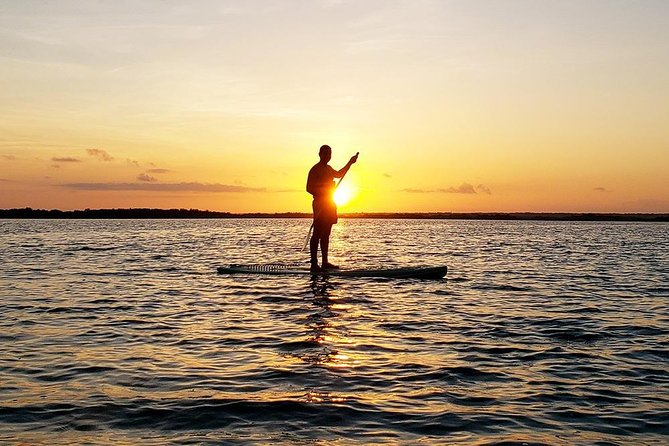 Explore and discover the beauty of the Bacalar lagoon in Mexico on a 3 hour sightseeing Stand Up Paddle Board Tour. The tour includes a professional bilingual guide (spanish and english), coffee, toast, fruit and water.
