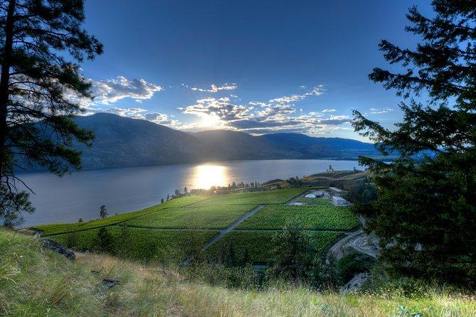 Winter Wine Tour - West Kelowna from Vernon - 7 Hrs, Kelowna y Okanagan Valley, CANADA