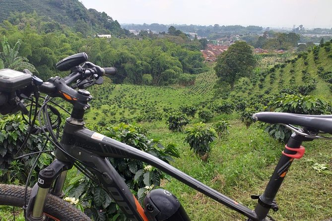 Rent a 9 speeds mountain bycicle and enjoy the beautiful viewpoints in an authentic coffee farm, ride in middle of coffee plants and enjoy the nature in the farm, the farm is so close to Calarcá and Armenia city