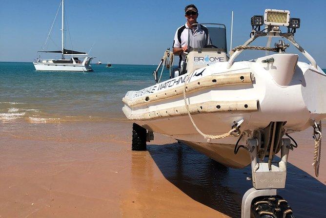 Snubfin Dolphin Eco Cruise from Broome, Broome, AUSTRALIA