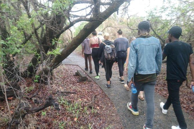 Nature and Falls Tours, Livingstone, ZIMBABUE