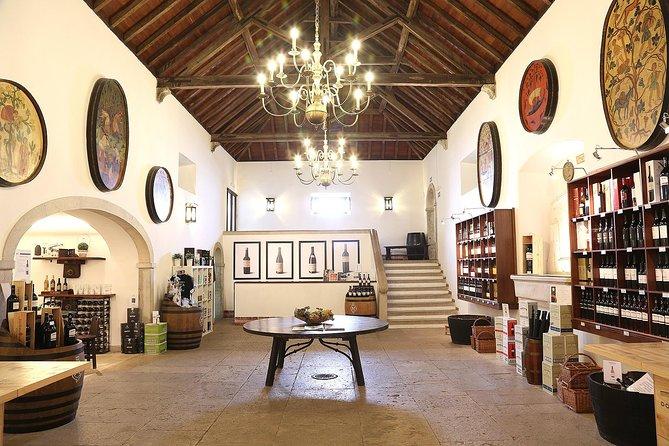 Tour Cultural & Vínica en Setúbal, Distrito de Setúbal, PORTUGAL