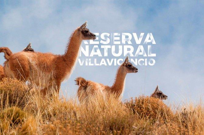 Tour en 4X4 Alta montaña ,Puente del Inca,Uspallata,Villavicencio, Mendoza, ARGENTINA