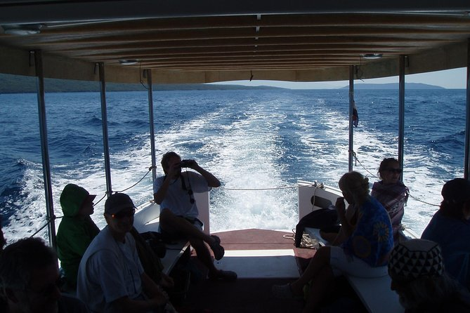 At this nice boat trip you will enjoy in the beauty of the neighbour islands, the untouched nature and the cristal clear Adriatic sea. You will arrive on beautiful bays from where can you discover the underwater world while snorkeling or relax in swimming in the tourquise, clear water. This trip will for sure be an unforgetable experience during your summer in Croatia.