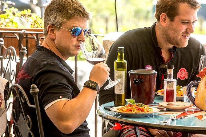 Mount Vesuvius & Wine Tasting with Lunch Private Tour from Amalfi Coast, Amalfi, ITALIA
