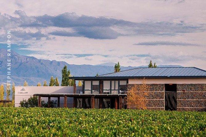 Tour del Malbec en Luján de Cuyo (privado y a medida), Mendoza, ARGENTINA