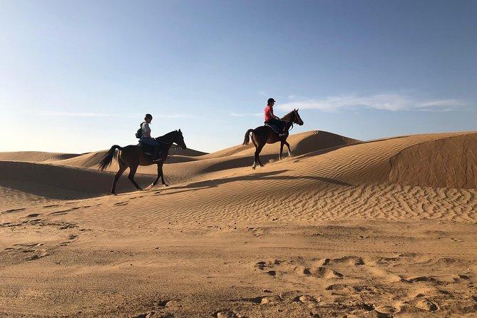Desert ride, Ajman, EMIRATOS ARABES UNIDOS