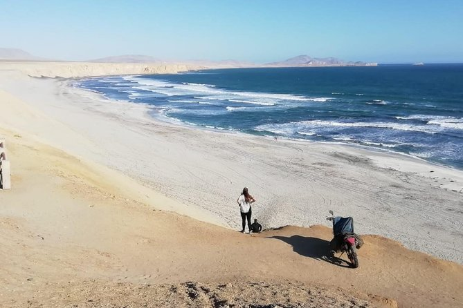 Private Tour: Full-Day Paracas Tour from Lima, Lima, PERU