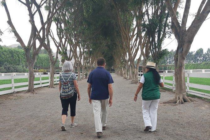 Pachacamac & Peruvian Paso Horse Show, Lima, PERU