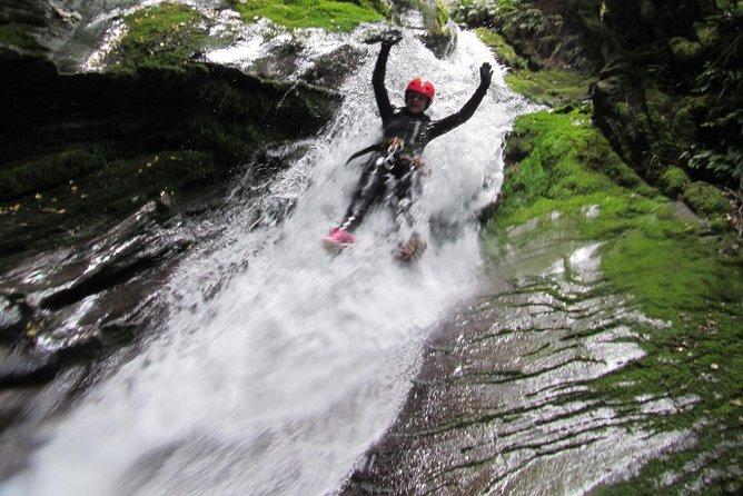 Niger Stream day trip, Wanaka, New Zealand