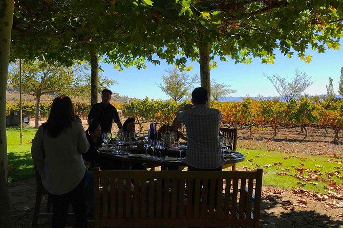 Recorrido con pícnic por las bodegas de Rioja y Laguardia con salida desde San Sebastián, San Sebastian, ESPAÑA