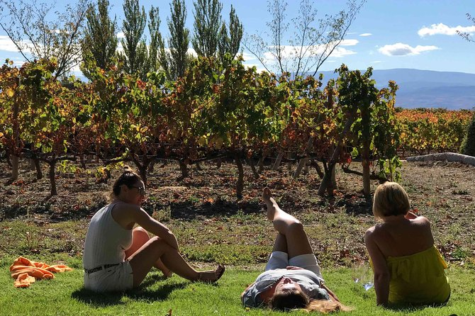 Enjoy a day of wine tasting in Spain's famed Rioja region during this 9-hour guided tour and picnic from San Sebastian. Visit three wineries, tasting at least 3 different wines in each, before heading to a fourth winery to tour its underground wine caves and tunnels – the setting for a picnic-style lunch paired with a Crianza red wine from the winery. Spend the afternoon exploring the medieval village of Laguardia. Hotel pickup and drop-off are included.