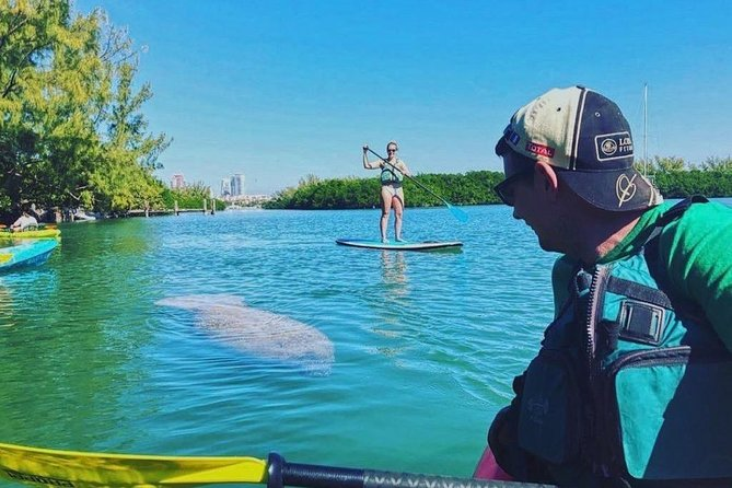 Manatee Foto Safari: Miami en Kayak y Paddleboard (tabla de paddle de pie), Miami, FL, ESTADOS UNIDOS