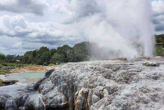 Everything Rotorua is known for in the one location - Highest geyser in the southern hemisphere, learn about or take part in Maori Arts - Wood Carving, Greenstone carving, flax weaving and Maori Tattoo. Te Puia's cultural legacy is to preserve and protect Maori culture