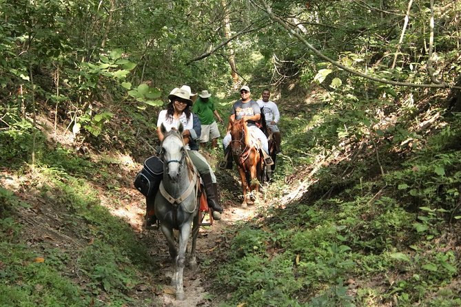 MÁS FOTOS, Combo - Jungle Horseback Riding Tour + Jungle Hiking Tour