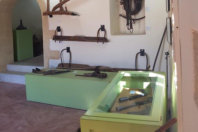 Experience Wine & Olive Oil Tour, La Canea, GRECIA